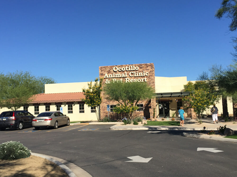 Ocotillo Pet Clinic Resort